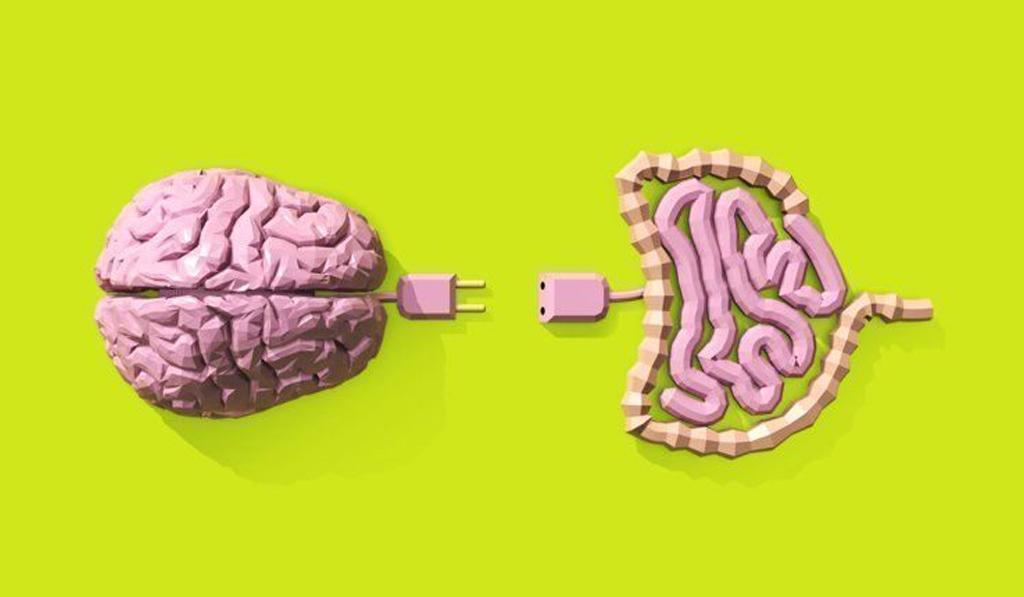 probioticos naturales cerebro colon irritable